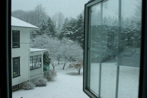 View of my snowy acre from the window of my second-story writing cave